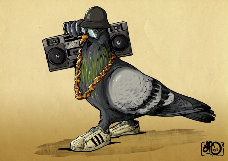 New Pigeon