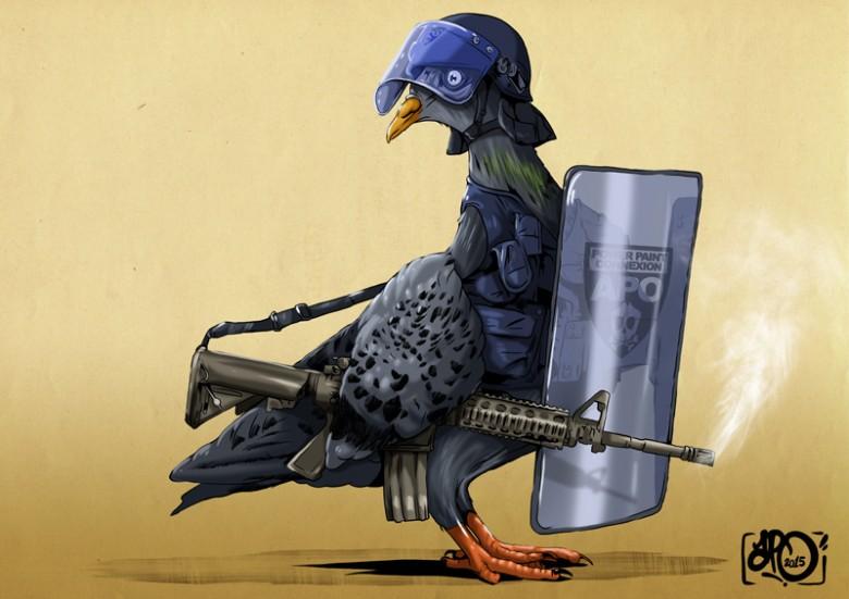 Pigeon Project la suite